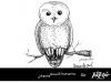 Inktober_9_SCREECH_owl